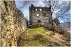 Ruine Niederhaus Nr.2