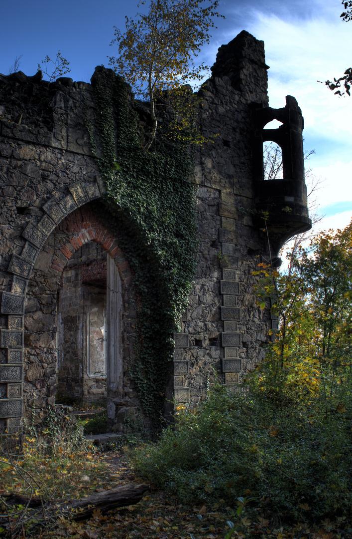 Ruine Pillnitz