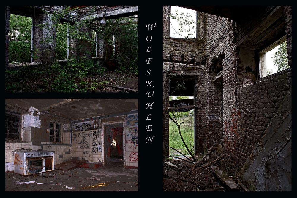 Ruine Wolfskuhlen
