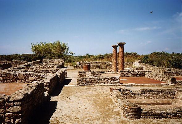 Ruinen in Paestum (Neapel 99 #4)