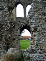 Ruinen - Priory Ruins in Binham/ Norfolk mit Löwenmäulchen