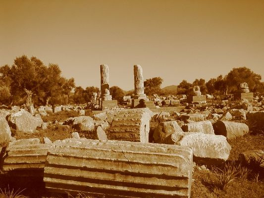 Ruinenlandschaft in Teos