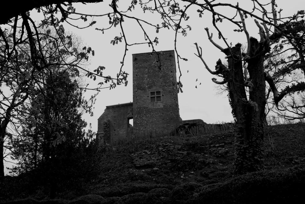 Ruines de Bourgogne