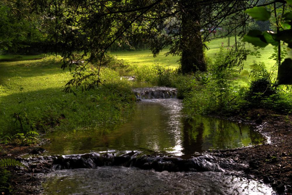Ruisseau à Chamleux (Belgique)