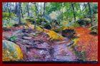Ruisseau asséché , Fontainebleau