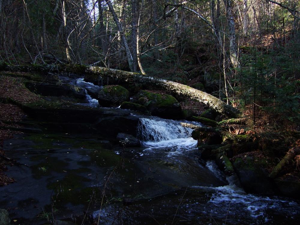 Ruisseau automnal