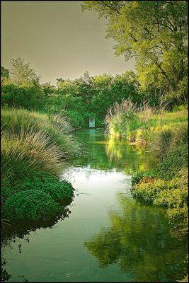 Ruisseau en Provence