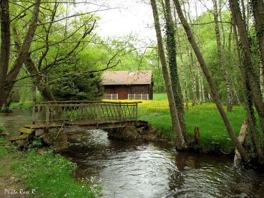 Ruisseau La Cane(87)