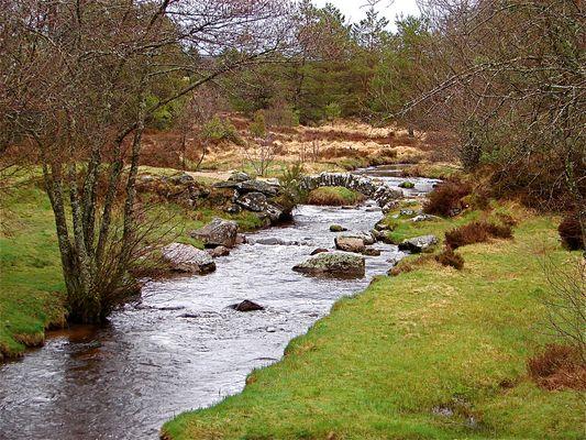 Ruisseau perdu dans la lande