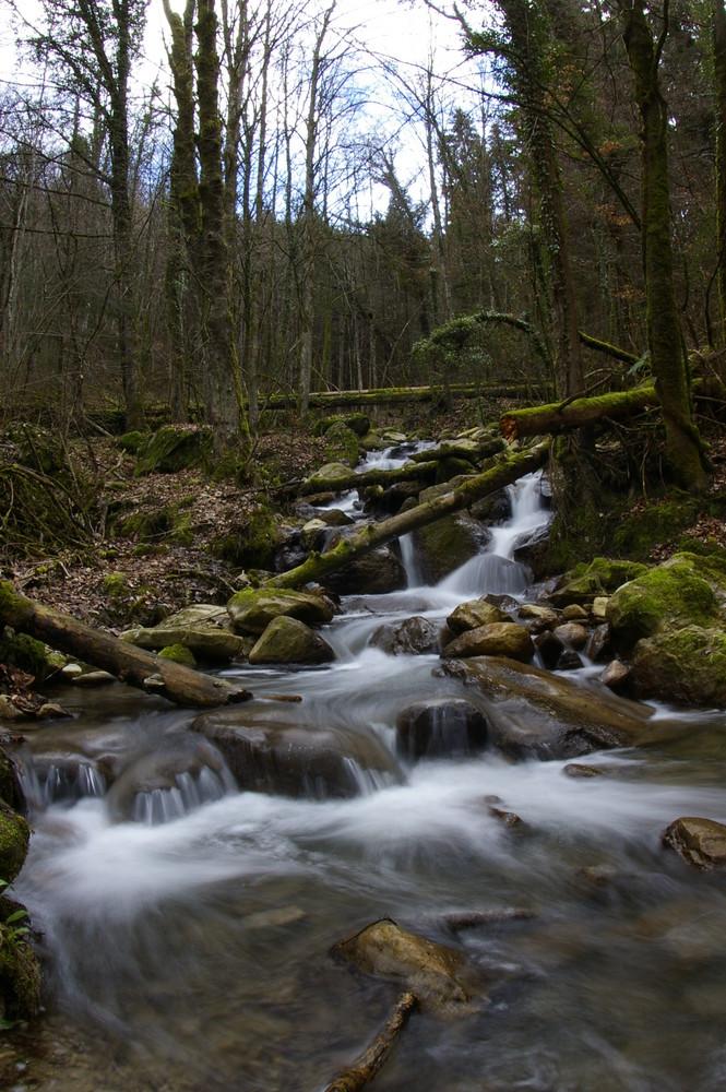 ruisseau qui traverse lugrin pour alimenter le lac leman :p