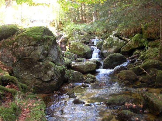 Ruisseaux d'Auvergne