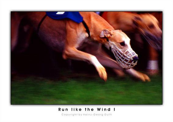 Run like the Wind (rereloaded)