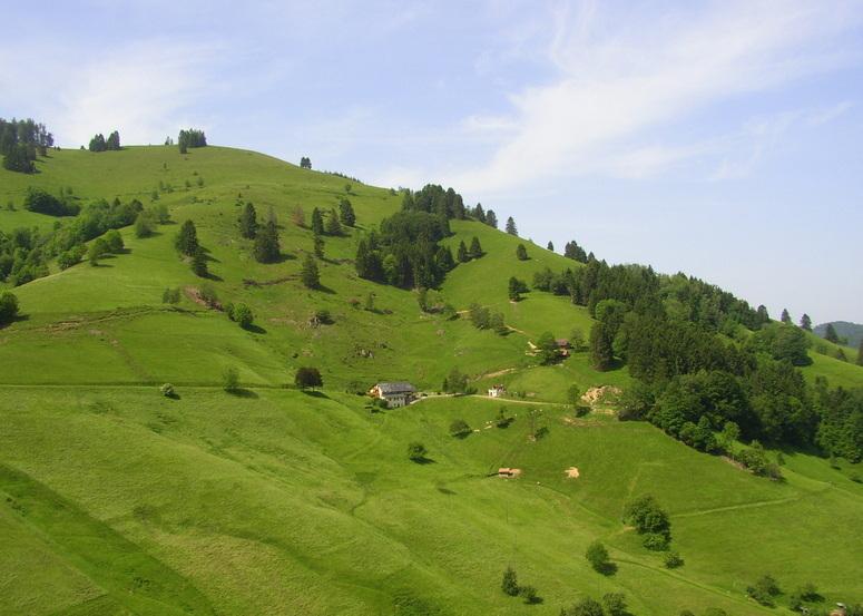 Rund um den Belchen im Schwarzwald