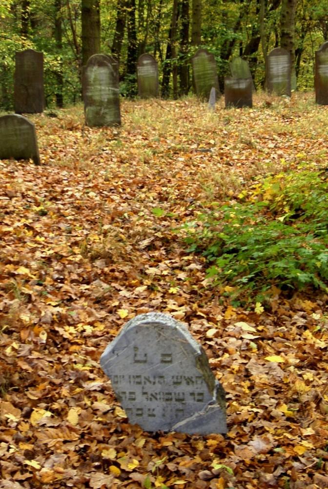 Runkel-der jüdische Friedhof (1)