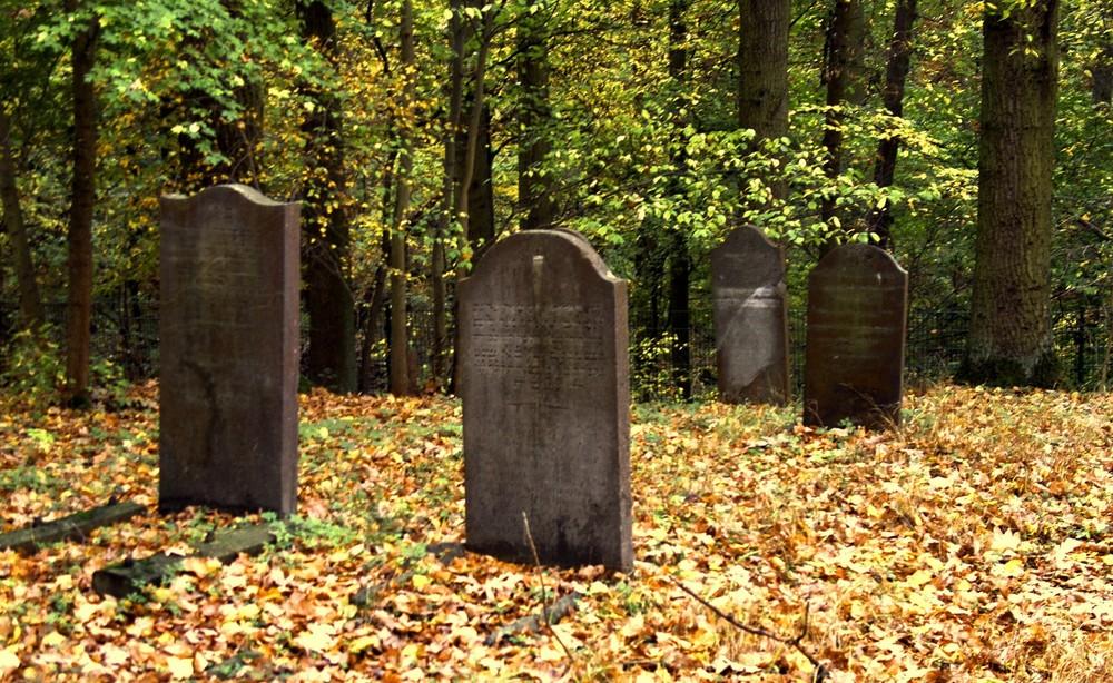 Runkel-der jüdische Friedhof (2)