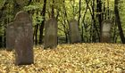 Runkel-der jüdische Friedhof (3)