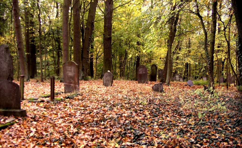 Runkel-der jüdische Friedhof (6)