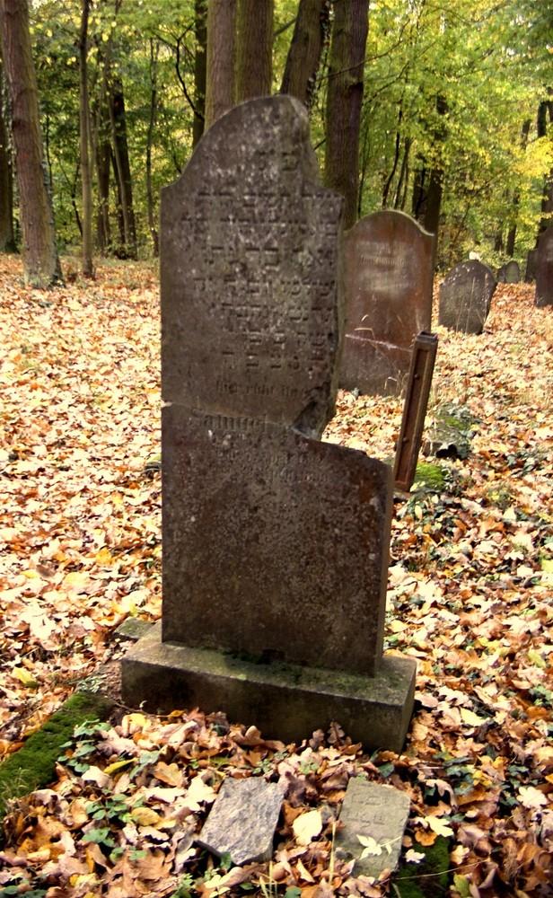 Runkel-der jüdische Friedhof (7)