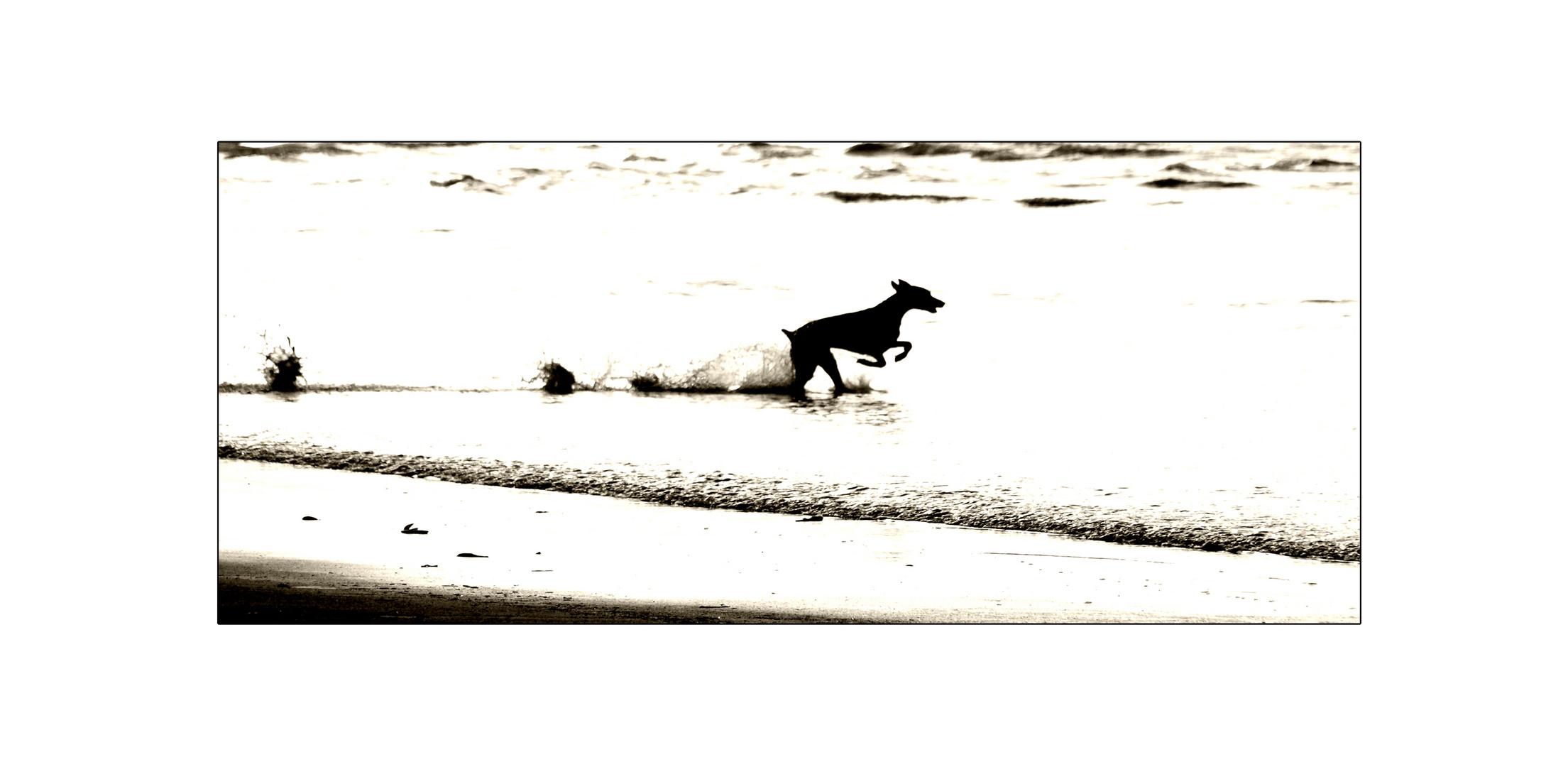 running in white waters