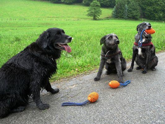 Rupi mit seinen Freunden Felix und Linus