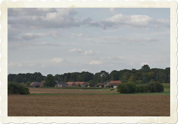 Rural landscape #3 - 16