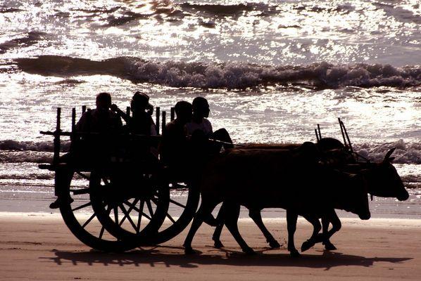 Rush hour am Ngapali Beach
