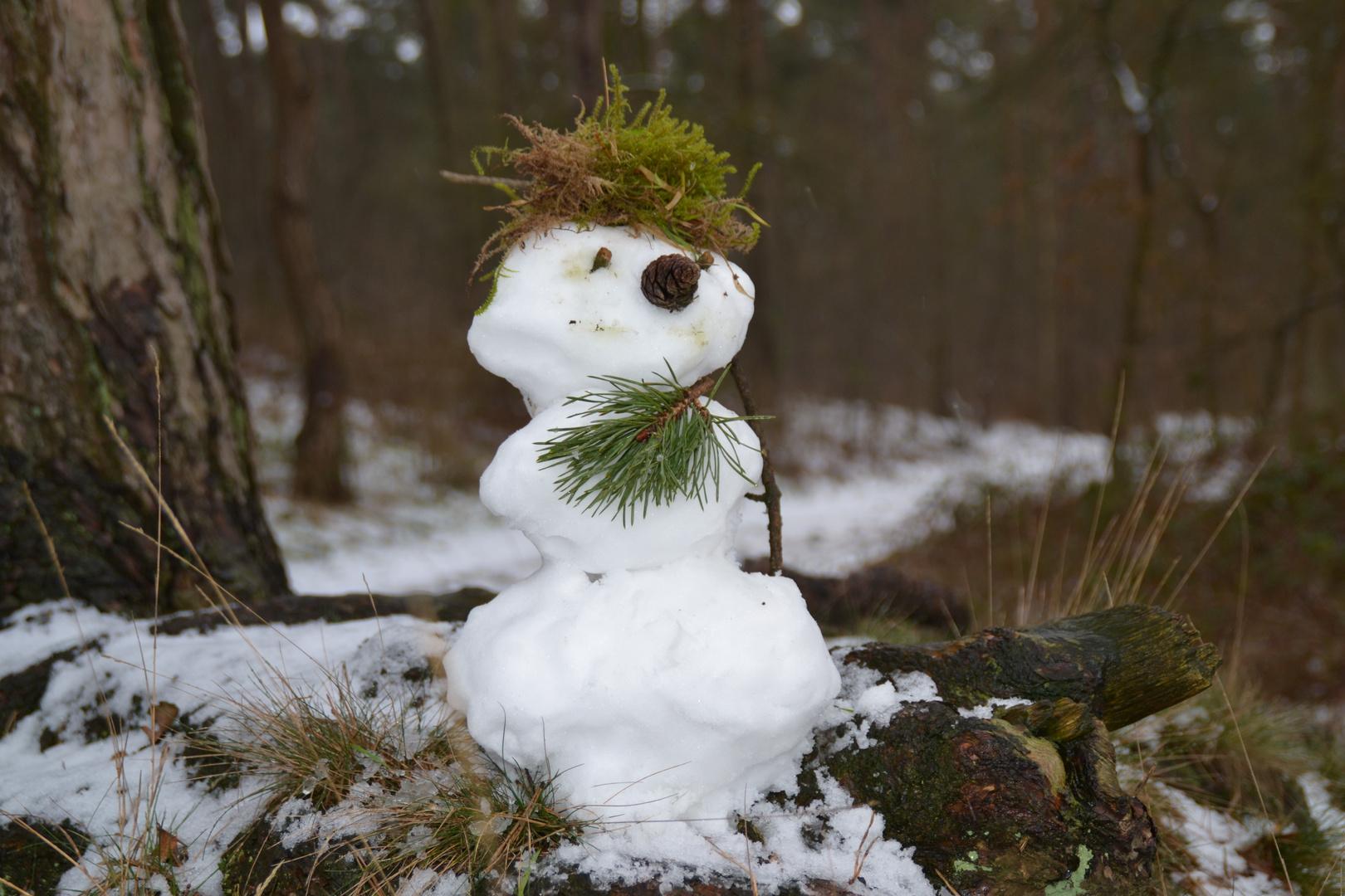 Rustikales Schneemännchen im Münsterland...