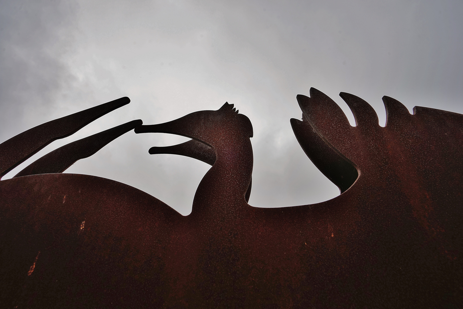rusty birds