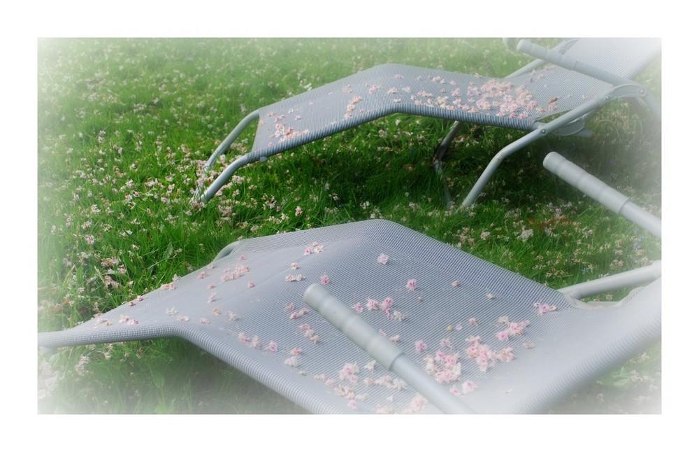 Rêveries parmi les fleurs