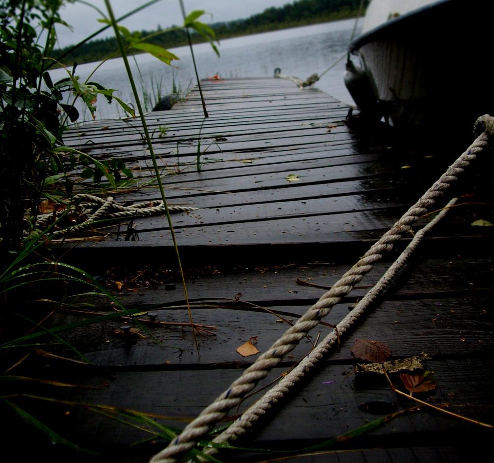Ryökäsvesi
