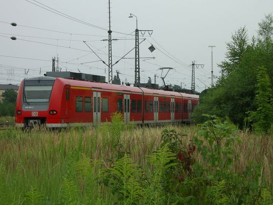 S-Bahn aus dem Busch