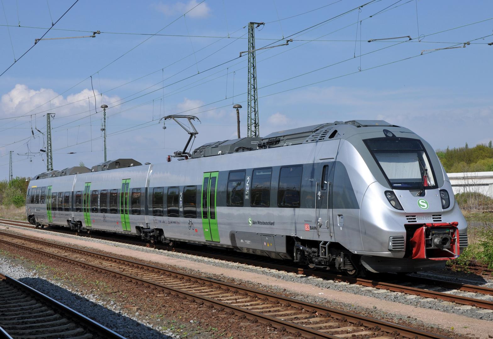 S-Bahn Hamster
