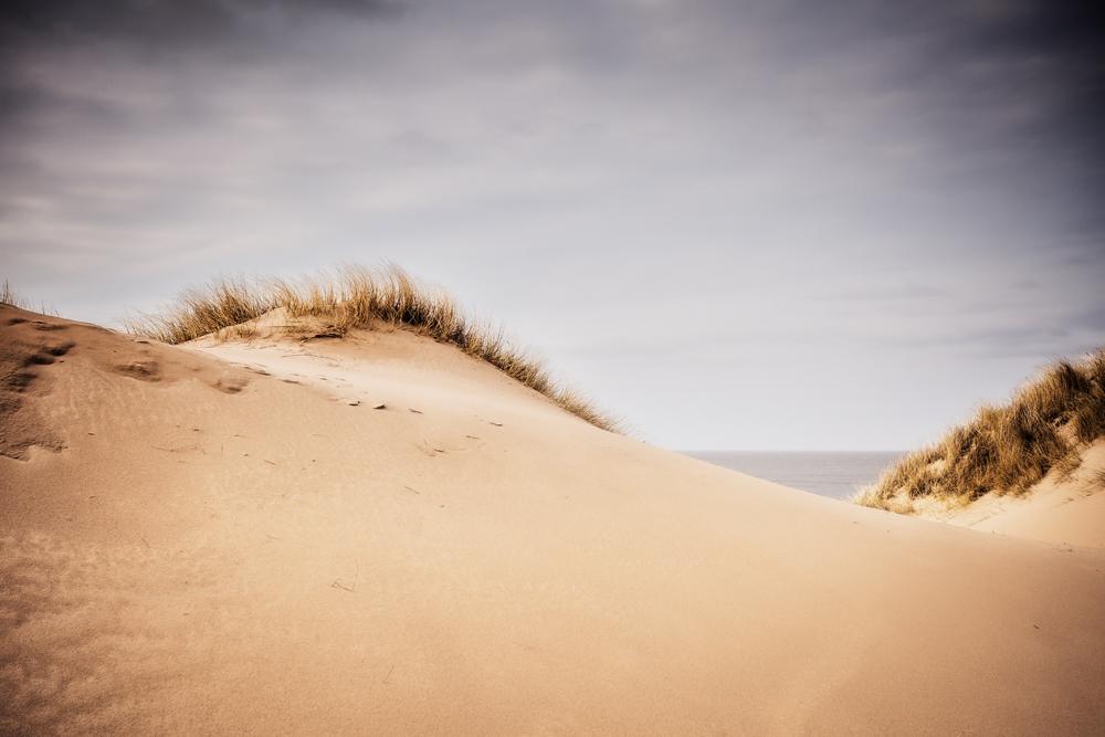 S Y L T - Dünen am Roten Kliff II