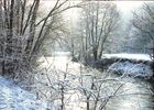 Saaleauen im Winter