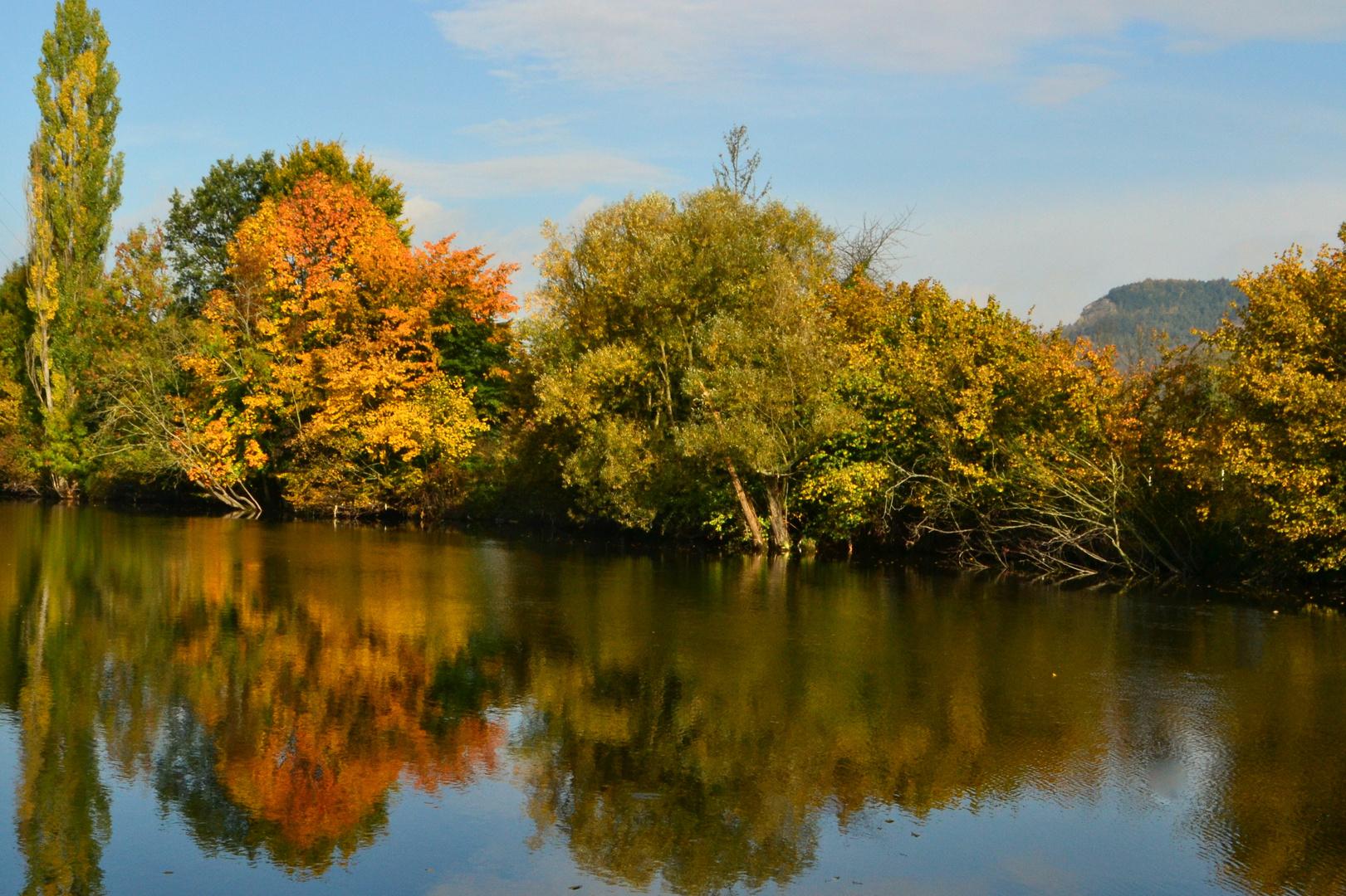 Saaleufer im Herbst