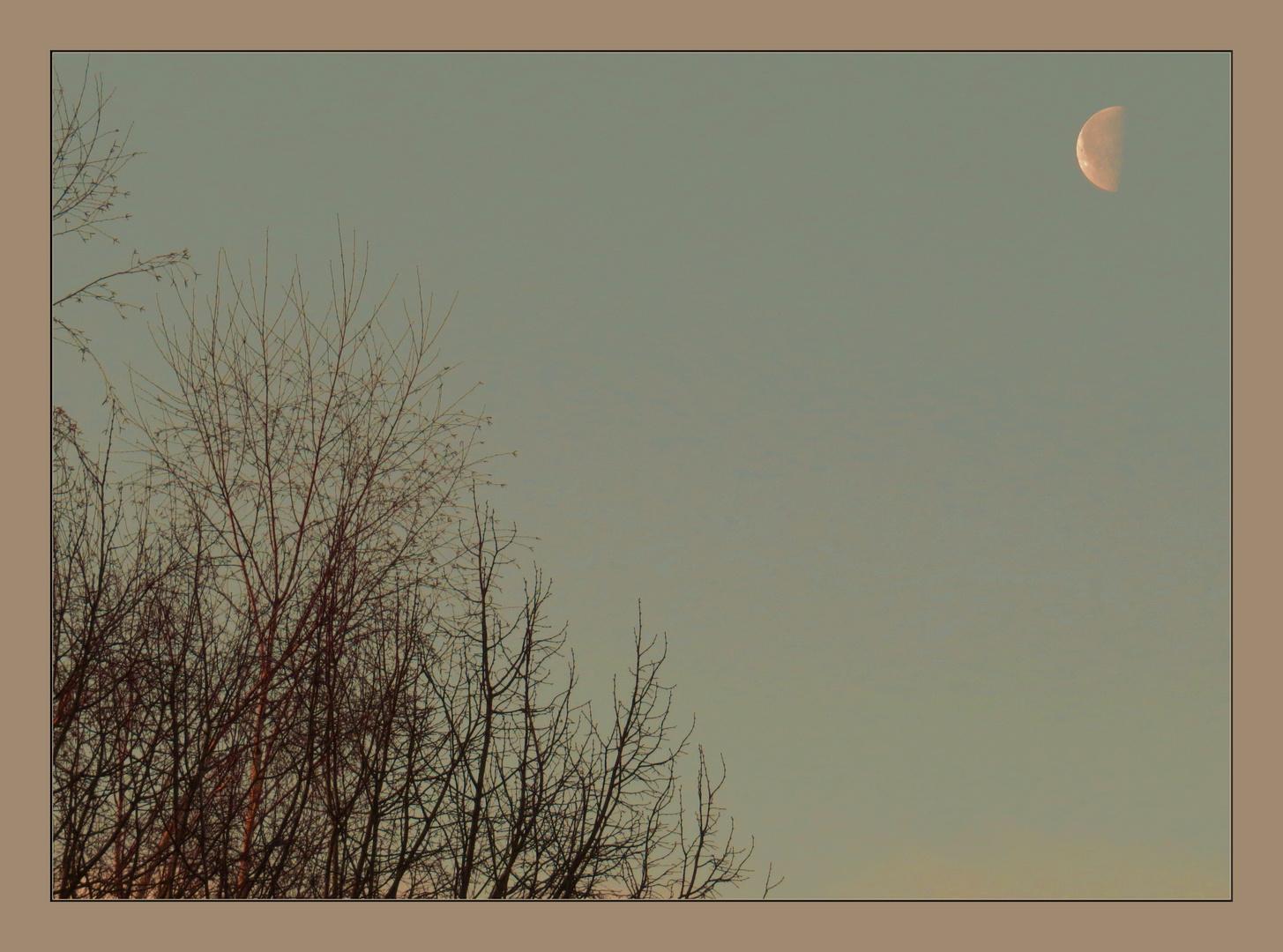 sachter Sonnenaufgang trifft auf 7.30 Uhr Mond,