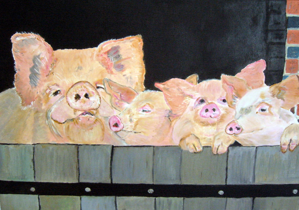 sacrés cochons