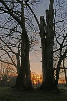Sacrow und Potsdam, 24.01.09 – 32