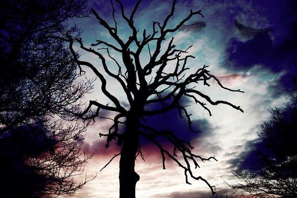 Sad looking sky