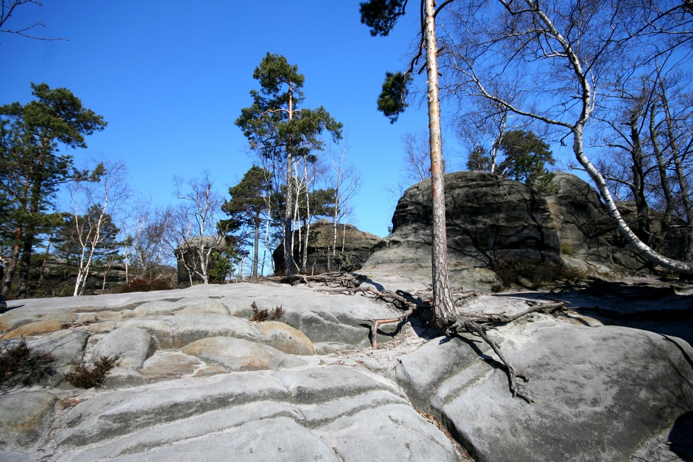Sächsische Schweiz...