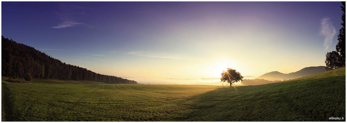 Sächsische Schweiz - Sonnenaufgang