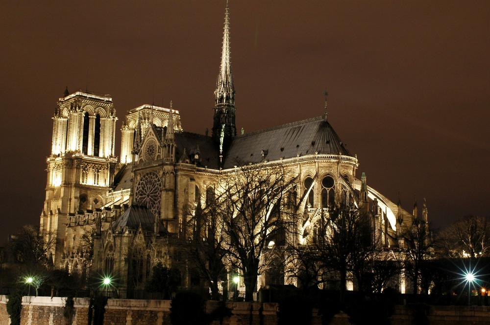 Safari vers Notre-Dame