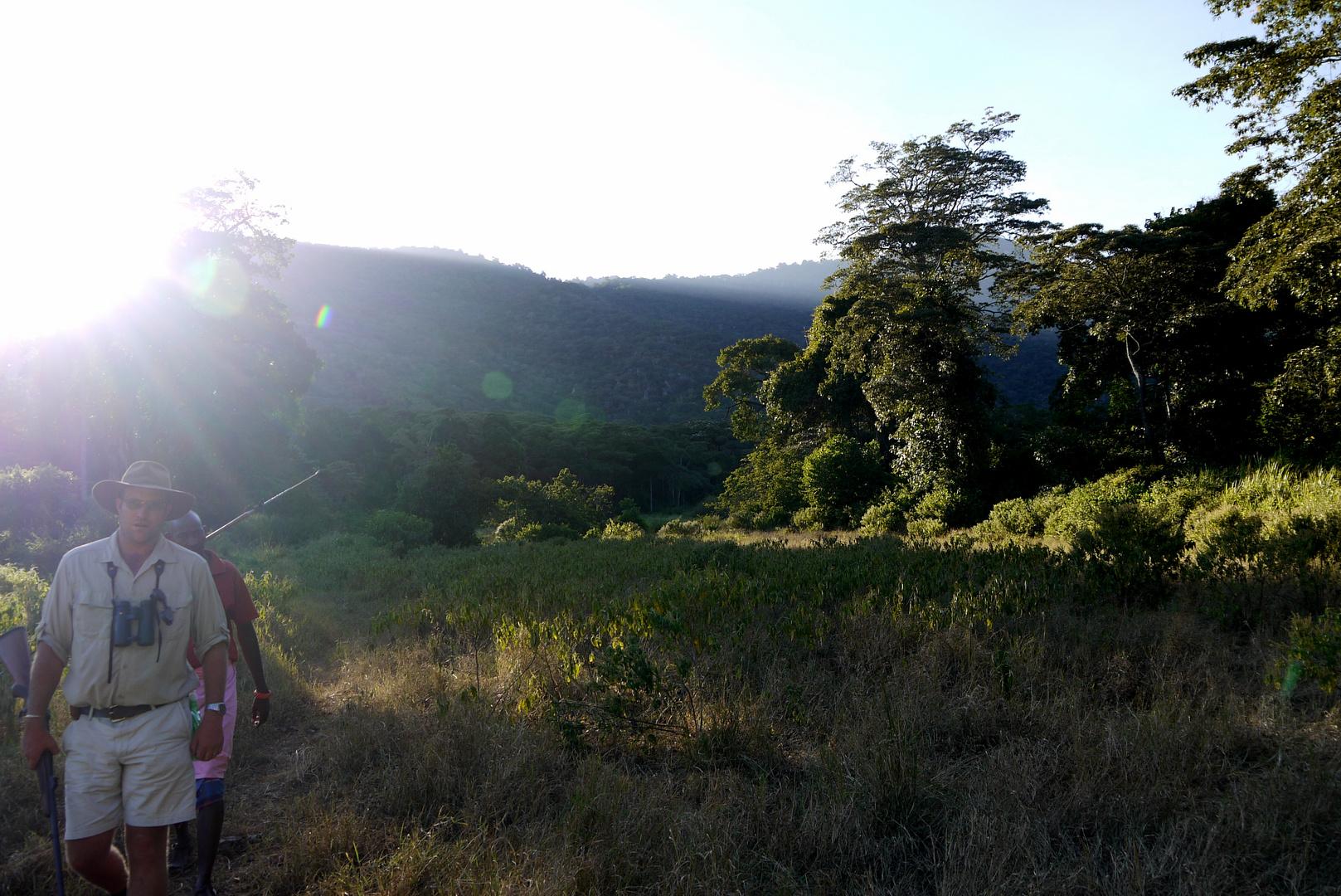 Safari zu Fuss