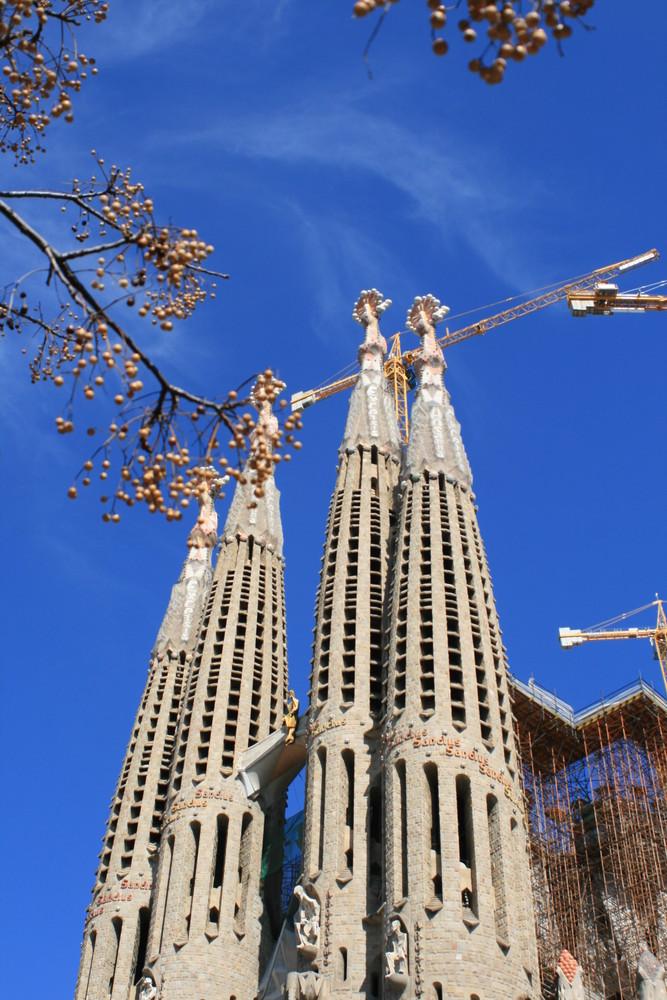 Sagrada Famila mit Gestrüpp / La Sagrada Familia con maraña