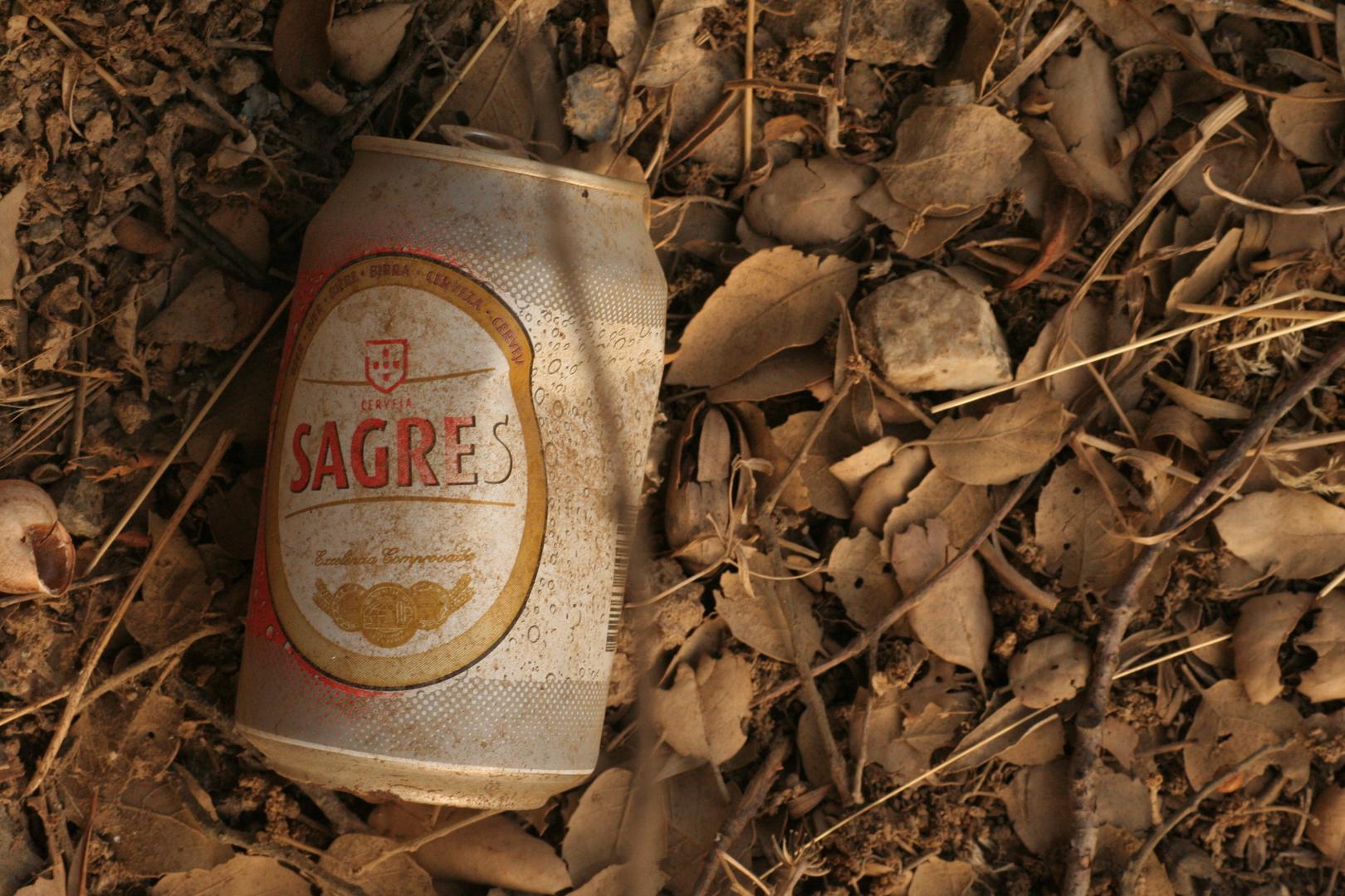 Sagres - Stillleben mit Bier und Korkeichenblättern im Alentejo/ Portugal