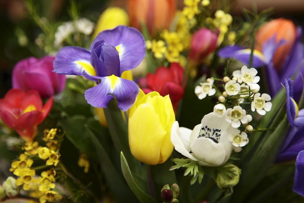 Sag's durch die Blume....