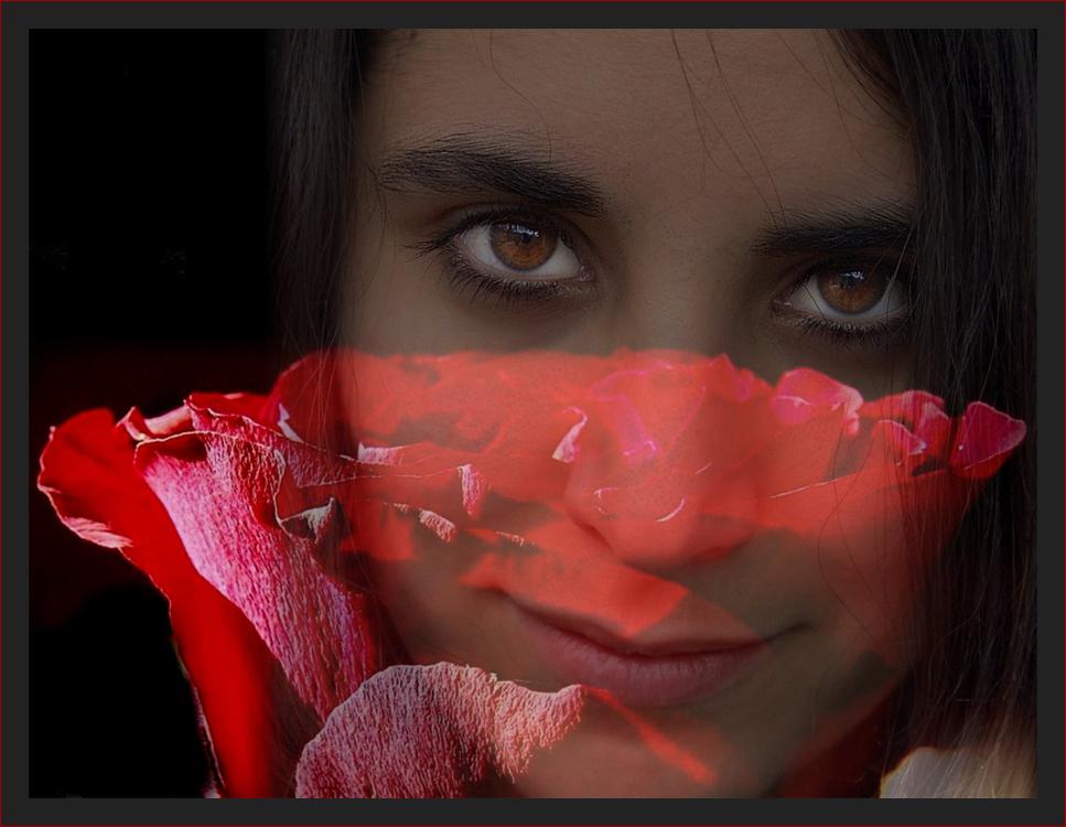 ...sags durch die Blume, die Antwort bekommst du von den Augen