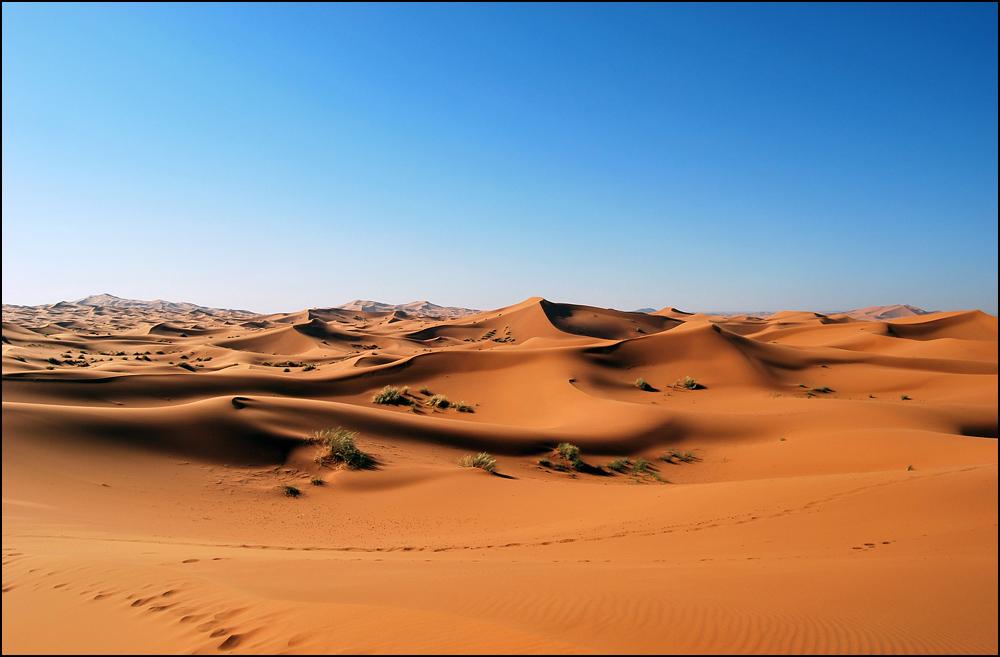 Sahara von Günter Hohensträter