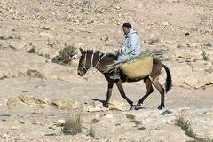 Sahara Explorer 13