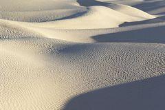 Sahara Explorer 4